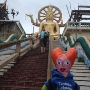 Flotti in Thailand 2013